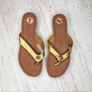 Golden coach shelly sandals